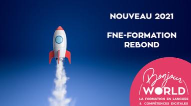 La nouvelle demande de subvention pour le FNE-Formation REBOND 2021
